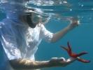 Anaïs et l'étoile de mer rouge